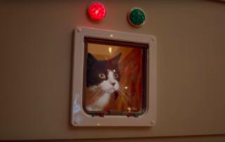 Mars Spot für Katzenfutter